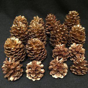 LOT: 16 Real, Gold-Painted Pine Cones